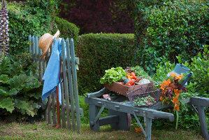 Bildnr.: 11353355<br/><b>Feature: 11353191 - Bl&#252;hende M&#252;hle</b><br/>Die Floristin Gabrielle erweckt eine alte franz&#246;sische M&#252;hle zu neuen Leben<br />living4media / Madamour, Christophe