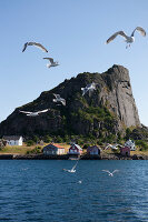 Zdjęcie numer: 11370559<br/><b>Feature: 11370542 - Heaven and Harbour</b><br/>The art of living in Norway&#39;s Lofoten Islands<br />living4media / Nordstrom, Annette