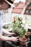 Bildno.: 11374529<br/><b>Feature: 11374522 - City Gardening</b><br/>All you need is a balcony and a few pots to grow your favourite foods<br />living4media / Eising Studio - Food Photo &amp; Video