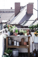 Bildno.: 11374537<br/><b>Feature: 11374522 - City Gardening</b><br/>All you need is a balcony and a few pots to grow your favourite foods<br />living4media / Eising Studio - Food Photo &amp; Video
