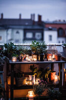 Bildno.: 11374549<br/><b>Feature: 11374522 - City Gardening</b><br/>All you need is a balcony and a few pots to grow your favourite foods<br />living4media / Eising Studio - Food Photo &amp; Video