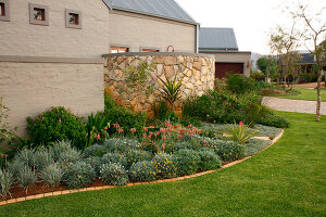 Bildno.: 11383137<br/><b>Feature: 11383132 - Indigenous Garden</b><br/>Low-maintenance country garden in Hartbeespoort<br />living4media / Great Stock!
