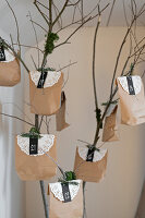 Bildnr.: 11425711<br/><b>Feature: 11425675 - O Tannenbaum</b><br/>Weihnachten in Schweden mit viel frischem Gr&#252;n aus dem Wald<br />living4media / M&#246;ller, Cecilia