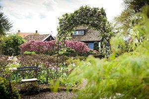 Bildno.: 11428715<br/><b>Feature: 11428706 - Tulip Time</b><br/>Spring garden in The Netherlands<br />living4media / Pietrek, Sibylle