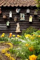 Bildno.: 11428725<br/><b>Feature: 11428706 - Tulip Time</b><br/>Spring garden in The Netherlands<br />living4media / Pietrek, Sibylle