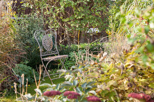 Bildno.: 11444475<br/><b>Feature: 11444463 - Green Love</b><br/>Making the most of an allotment plot in Cologne, Germany<br />living4media / Pietrek, Sibylle