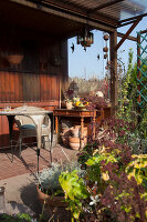 Bildno.: 11444479<br/><b>Feature: 11444463 - Green Love</b><br/>Making the most of an allotment plot in Cologne, Germany<br />living4media / Pietrek, Sibylle