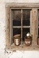 Bildnr.: 11445689<br/><b>Feature: 11445673 - Einen Blumentopf gewinnen</b><br/>Selbst gestaltete &#220;bert&#246;pfe als Mitbringsel und Winterdeko<br />living4media / Fr&#246;hlich, Heidi