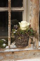 Bildnr.: 11445691<br/><b>Feature: 11445673 - Einen Blumentopf gewinnen</b><br/>Selbst gestaltete &#220;bert&#246;pfe als Mitbringsel und Winterdeko<br />living4media / Fr&#246;hlich, Heidi