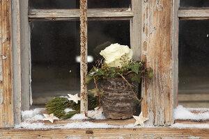Bildnr.: 11445695<br/><b>Feature: 11445673 - Einen Blumentopf gewinnen</b><br/>Selbst gestaltete &#220;bert&#246;pfe als Mitbringsel und Winterdeko<br />living4media / Fr&#246;hlich, Heidi