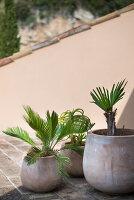 Bildno.: 11451949<br/><b>Feature: 11451948 - Lakeside Living</b><br/>Spectacular home on the western shore of Lake Garda, Italy<br />living4media / studiow&#228;lder