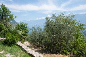 Bildno.: 11452025<br/><b>Feature: 11451948 - Lakeside Living</b><br/>Spectacular home on the western shore of Lake Garda, Italy<br />living4media / studiow&#228;lder
