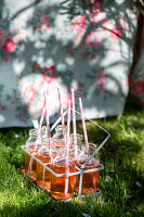 Bildno.: 11453611<br/><b>Feature: 11453608 - Tea in the Garden</b><br/>Summertime is garden tea time in the United Kingdom<br />living4media / Heinze, Winfried