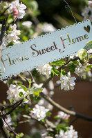 Bildno.: 11453615<br/><b>Feature: 11453608 - Tea in the Garden</b><br/>Summertime is garden tea time in the United Kingdom<br />living4media / Heinze, Winfried