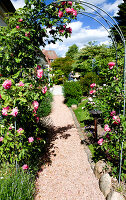Bildno.: 11456121<br/><b>Feature: 11456116 - For Love of Roses</b><br/>Danish garden features perennial beds and roses<br />living4media / Lene-K