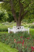 Bildno.: 11457461<br/><b>Feature: 11457439 - Sofiero Castle Garden</b><br/>Castle garden in Helsingborg, Sweden<br />living4media / Pietrek, Sibylle