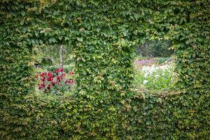 Bildno.: 11457463<br/><b>Feature: 11457439 - Sofiero Castle Garden</b><br/>Castle garden in Helsingborg, Sweden<br />living4media / Pietrek, Sibylle