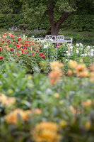 Bildno.: 11457471<br/><b>Feature: 11457439 - Sofiero Castle Garden</b><br/>Castle garden in Helsingborg, Sweden<br />living4media / Pietrek, Sibylle