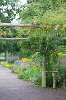 Bildno.: 11457473<br/><b>Feature: 11457439 - Sofiero Castle Garden</b><br/>Castle garden in Helsingborg, Sweden<br />living4media / Pietrek, Sibylle