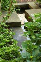 Bildnr.: 11501051<br/><b>Feature: 11501027 - Gr&#252;ne Oase in der Stadt</b><br/>Galeristin Elly liebt es in ihrem Garten zu lustwandeln und zu meditieren, Dresden<br />living4media / Krieg, Roland
