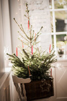 Bildno.: 11515633<br/><b>Feature: 11515614 - Decking the Halls</b><br/>How to create an inviting entry area for the holiday season<br />living4media / Bildh&#252;bsch