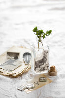 Bildnr.: 11948019<br/><b>Feature: 11948017 - Vintage-Fr&#252;hling</b><br/>Stillleben aus Heute &amp; Gestern, Blumen, Fotos und Kuchen<br />living4media / Koll, Alicja