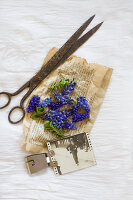 Bildno.: 11948037<br/><b>Feature: 11948017 - Vintage Spring</b><br/>Nostalgic project combining old photos and flowers<br />living4media / Koll, Alicja