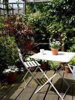 Bildnr.: 11962643<br/><b>Feature: 11962634 - Gl&#252;ckstreffer</b><br/>Offener Kamin, Holzdielen, lichtdurchflutet, mit Garten - in London. Ja, das gibt es.<br />living4media / Hogan, Sarah