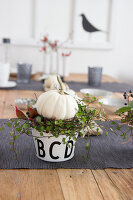 Bildno.: 11979193<br/><b>Feature: 11979179 - New Autumn Colours</b><br/>A new look for autumn decoration: a table in white<br />living4media / Algermissen, Astrid