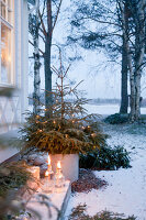 Bildno.: 11990893<br/><b>Feature: 11990828 - Christmas in Skellefte&#229;</b><br/>White is the theme of this Christmas decor in Skellefte&#229;, Sweden<br />living4media / Isaksson, Camilla