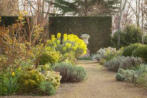 Bildno.: 12084113<br/><b>Feature: 12084103 - Shrubbery Deluxe</b><br/>Blooming garden in L&#246;hne, Germany<br />living4media / Pietrek, Sibylle