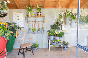 Immagine N°: 12100915<br/><b>Feature: 12100906 - A Place for Spring</b><br/>Covered area can provide a special place in the garden<br />living4media / Herwig, Modeste