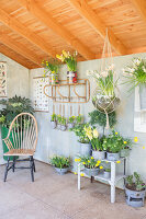 Immagine N°: 12100917<br/><b>Feature: 12100906 - A Place for Spring</b><br/>Covered area can provide a special place in the garden<br />living4media / Herwig, Modeste