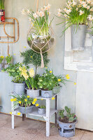 Immagine N°: 12100919<br/><b>Feature: 12100906 - A Place for Spring</b><br/>Covered area can provide a special place in the garden<br />living4media / Herwig, Modeste