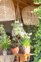 Immagine N°: 12100929<br/><b>Feature: 12100906 - A Place for Spring</b><br/>Covered area can provide a special place in the garden<br />living4media / Herwig, Modeste