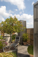 Bildno.: 12100959<br/><b>Feature: 12100951 - High Gardening</b><br/>Rooftop garden in Antwerp, Belgium<br />living4media / Obijn, Guy