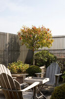 Bildno.: 12100985<br/><b>Feature: 12100951 - High Gardening</b><br/>Rooftop garden in Antwerp, Belgium<br />living4media / Obijn, Guy