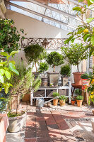 Bildno.: 12236435<br/><b>Feature: 12236411 - Under the Lemon Tree</b><br/>Gardening in a conservatory makes everything possible<br />living4media / Piru-Pictures
