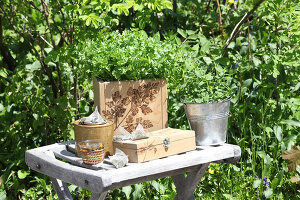 Bildno.: 12242575<br/><b>Feature: 12242556 - Decorative Herbs</b><br/>How to use herbs as a decorative accessory<br />living4media / Raider, Peter
