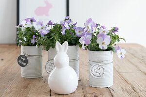 Bildno.: 12313265<br/><b>Feature: 12313229 - Tinned Pleasure</b><br/>Recycle food tins to create pastel coloured planters<br />living4media / Algermissen, Astrid