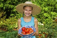 Young Girl Holding a Bowl of Fresh Picked Tomatoes