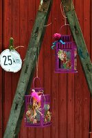 Purple lanterns with card flowers hanging from old ladder in front of red wooden door