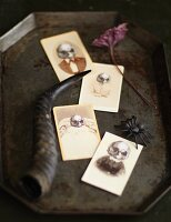 Spooky skull pictures on Halloween cards