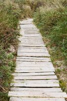 Narrow wooden path through the dunes