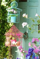 Small potted plants in pastel-coloured bird cages hanging in front of old door with door knocker