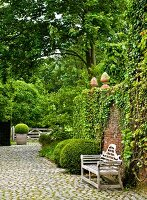 Gardens with topiary shrubs & wooden bench against wall