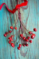Rose hip branch with velvet ribbon