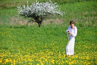 Woman making dandelion wreath in the field