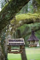 Rustic bird table hanging from tree