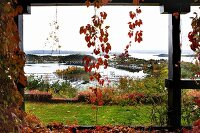 View through climber-covered veranda pillars into autumnal garden on Norwegian skerry coast